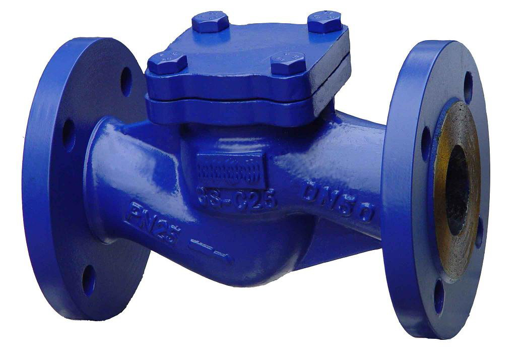 The Development Characteristic of Check Valve