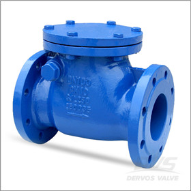 DIN 3356 Cast Iron Check Valve, GJL250, 4 Inch