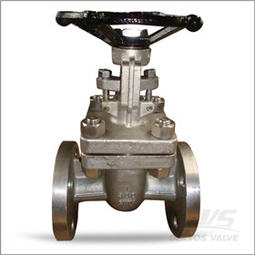 CN7M Gate Valve, 1 Inch, CL300, Flanged