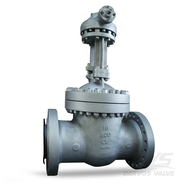 Flanged Gate Valve, 16 Inch, CL900, C5